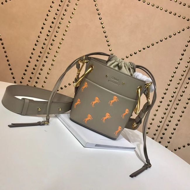 CHLOE Mini Roy leather bucket bag 3E128C grey